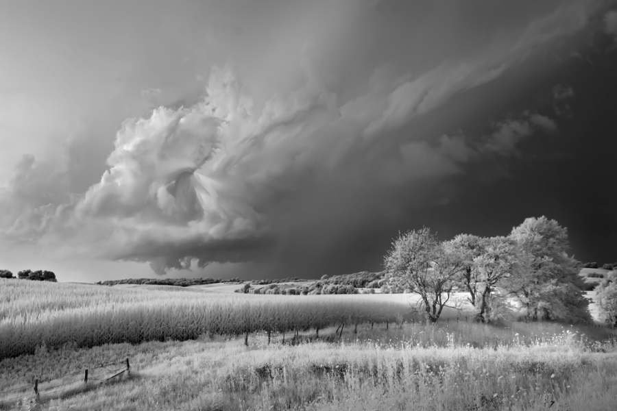 Mitch Dobrowner, Storm, Field and Trees